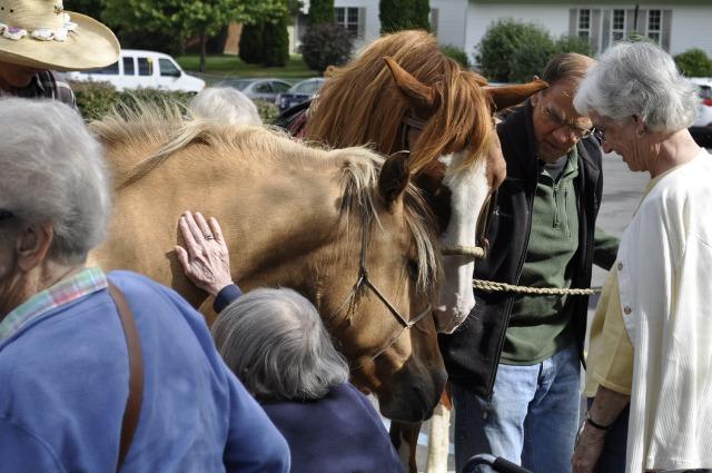 Geiser Horses 010_edited-1
